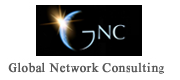 Gloval Network Consulting